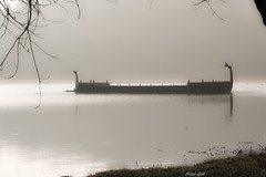 Römisches Patrouillienschiff der FAN (Fridericiana Alexandrina Navis) (Peter Goll thx for +7.000.000 views) Tags: erlangen germany römerboot dechsendorf weiher pond nebel fog lake d850