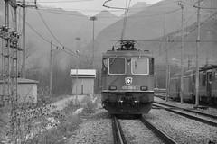 domo II set 63 #13 by train_spotting - beura-cardezza (VB) - venerdi 01 dicembre 2017, h 08.39