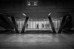 flow of pedestrians 3 (Guy Goetzinger) Tags: goetzinger nikon d850 pedestrian street people underground passanten leute railway station switzerland monochrom bw 2018