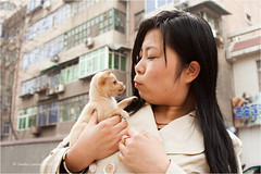 Love at First Sight (Sandra Lipproß) Tags: china xian portrait porträt travel asia asien youngwoman dog pup puppy welpe hund jungefrau sandralippross street 西安市 hsian 陝西省 shaanxi