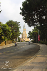Da Lat - Road lead to St Nicholas of Bari Cathedral 28-03-2018-480 (Phúc Photography [01203826878]) Tags: 2018 binhbanhatrangdalat canon caonguyen cathedral catholic cathédralesaintnicolas dalat lamdong langbiang lâmđồng lạngbương pasteurinstitute romancatholiccathedral travel vietnam asia beautiful building caonguyenlamvien chiều city outdoor peace religion world đàlạt