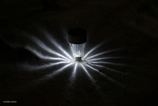 snow light J78A2061
