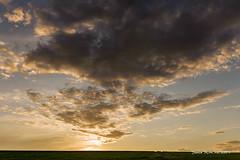 Emanation (patoche21) Tags: bourgogne bourgognefranchecomte ciel cotedor europe france nature paysage ambiance couchant coucherdesoleil flocon lumière lumièredusoir minimalisme nuage patrickbouchenard burgundy sky light daylight minimalism cloud atmosphere landscape sunset