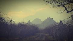 Collines de Sion (jplana) Tags: sion valais suisse châteaux