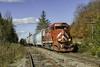 NPWJ at Sutton, VT (Thomas Coulombe) Tags: vermontrailsystem vrs vermontrailway vtr washingtoncounty wacr npwj emdgp402 gp402 freighttrain train sutton vermont