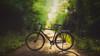 Evening Ride (Bastian.K) Tags: bike fahrrad wald forest wood woods bokeh panorama bokehrama brenizer olympus om zuiko autot 180mm 20 2180 f20 vsf fahrradmanufaktur t100 deutschland germany stuttgart remseck