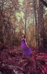 (Wendy Lu.) Tags: wendylu canon5d beautiful young woman girl female standing forest pink purple fantasy snow snowing flowy lavender dress epic looking up woods trees dreamy romantic fairytale