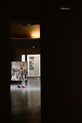 Europalia 2018 (mariadoloresacero) Tags: acero mdacero ilca68 sony bienale bienal europalia expositions exposiciones gallery gallérie galería ravenstein brussels bruxelles bruselas belgique belgium bélgica