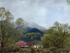 (mr. failbetter) Tags: southwest landscape weather pink mountains taos newmexico