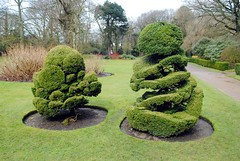 Outside topiary (zawtowers) Tags: ruffordoldhall rufford lancashire national trust property hesketh family residence gradei listed building built 1530 historic house topiary outside appealing