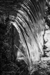 B&W 70/365 (lucyrogersphotography) Tags: blackandwhitephotochallenge blackandwhite photochallenge 365 lucyrogersphotos waterfall water river templenewsam leedsuk leeds templenewsamleeds beautiful nature