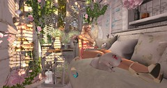 the gift of love (nicandralaval1) Tags: tarte decor decorate dustbunny silveryk persefona keke ariskea kunst applefall theseasonsstory mb entice wasabipills mishmish ddd kunglers jewelry fashion secondlife secondlifefashion mesh bento lelutka laq maitreya thelittlebranch tia belleepoque