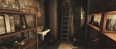 (courier_ttf) Tags: fallout fallout4 enb