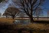 Huhtikuu/ April 2018 (tommi.hietaniemi) Tags: haida canon canon1dmarkiii canon1740mml tree trees lake järvi tuusula tuusulanjärvi finland instagramhiezu79 tommi hietaniemi water sun
