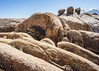 Alabama Hills (dwblakey) Tags: california landscape easternsierra exploring outdoors inyocounty lonepine alabamahills rocks unitedstates us