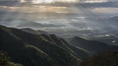 Morning light. (ChusPS) Tags: montseny catalunya catalonia fogarsdemontclús light morning unesco barcelona mountain nikon nature manfrotto sunrays sunrise forest foret landscape views biospherereserve naturalpark mediterranean sea sky clouds rays