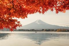 逆富士 富士山 (里卡豆) Tags: minamitsurugun yamanashiken 日本 jp fujiyoshidashi penf 17mm f12 pro olympus17mmf12pro 關東 japan kanto olympus 富士山 fujisan