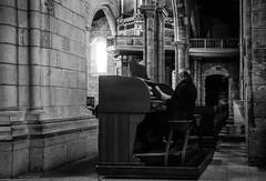 Organist (Laszlo Horvath.) Tags: guimaraes portugal portugalia organ organist sigma1835mmf18art nikond7100 monochrome blackwhite blackandwhite
