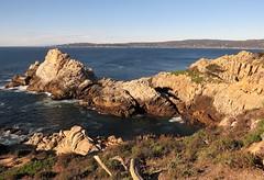 Point Lobos Scenery (Larry Myhre) Tags: pointlobos scenery california carmel ocean
