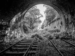 Mono Rail (Jason_Hood) Tags: southstaffordshireline southstaffordshirerailway disused abandoned railway railroad tunnel dudley dudleytunnel