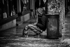 """""""Tu as assez pour tous les deux ?"""" /  """"Have you money enough for both?"""" (vedebe) Tags: ville street rue city urbain urban homme humain human people chiens animaux noiretblanc netb nb bw monochrome société"""