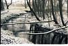 (no49_pierre) Tags: landscape snow winter kodak portra nikkormat nikon nikkorh film 35mm