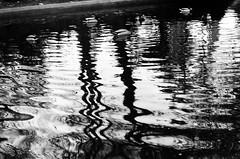 ducks... (Mimi & Oly) Tags: minolta minoltasrt303b minoltasrt202 srt303b srt202 ilford panf ilfordpanf ilfordpanf50 film filmcamera filmphotography filmphoto argentique photographieargentique photoargentique photo photographie photography black white blackandwhite noiretblanc bw blackwhite noir blanc blackandwhitephotography photographienoiretblanc blackandwhitefilm pellicule pelliculenoiretblanc street streetphotography rue photoderue animal animals eau water ducks canards canal mare animaux