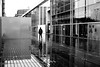 On the gleaming path (pascalcolin1) Tags: paris13 bnf pluie rain reflets reflection luisant gleaming allée path photoderue streetview urbanarte noiretblanc blackandwhite photopascalcolin 50mm canon50mm canon
