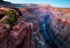 My Toroweap (ebhenders) Tags: grand canyon national park arizona toroweap tuweep colorado river twilight tree cliff sunset grandcanyon
