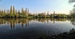 Main (wernerfunk) Tags: fluss river landschaft spiegelung hessen