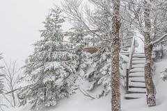 Nouvelle neige! - 18 avril 2018 - Mont SUTTON (Mont SUTTON) Tags: sutton201718 fermé neige