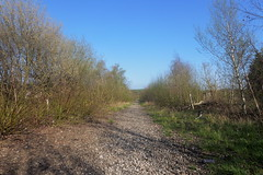 Former railway station site at Catcliffe, Sheffield  (former SDR route)   April 2018 (dave_attrill) Tags: ballast april 2018 station site catcliffe sheffield railway line disused trackbed remains goods sdr sheffielddistrictrailway southyorkshire