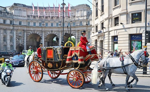 Escorted Horses & Carriage