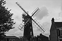 Windmill   Monochrome (brianarchie65) Tags: holdernessroad windmill windmills sales trees rabbit skidbymill skidby grass monochrome blackandwhite blackandwhitephotos blackandwhitephoto blackandwhitephotography ngc unlimitedphotos flickrunofficial flickruk flickr flickrcentral ukflickr canoneos600d geotagged brianarchie65