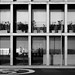 Reflexos / Reflections
