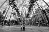 Catedral da Sé - São Paulo (mariohowat) Tags: sãopaulo catedraldasé monochrome brasil brazil samyang8mm fisheye bw blackandwhite blancoynegro pb pretoebranco