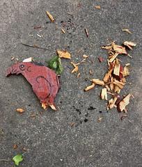Bad Millie (Maggggie) Tags: takeaim wood food dog bad chew destruction garden baddog