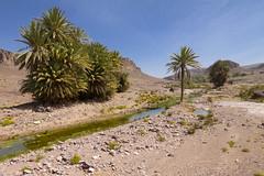 2018-3996 (storvandre) Tags: morocco marocco africa trip storvandre marrakech marrakesh valley landscape nature pass mountains atlas atlante berber ouarzazate desert kasbah ksar adobe pisé