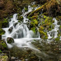 Cordova Roadside Waterfall (fentonphotography) Tags: alaska cordova waterfall water green moss longexposurephotography nature copperriverdelta princewilliamsound chugachmountains