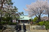 18o2733 (kimagurenote) Tags: 護国寺 gokokuji temple 桜 sakura prunus cerasus cherry blossom flower 東京都文京区 bunkyotokyo bunkyōtokyo