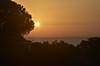 Sonnenaufgang an der Küste von Luz (Lagos), Algarve (4) (Chironius) Tags: portugal algarve luz atlantik atlantischerozean atlanticocean morgendämmerung sonnenaufgang morgengrauen утро morgen morning dawn sunrise matin aube mattina alba ochtend dageraad zonsopgang рассвет восходсолнца amanecer morgens dämmerung gegenlicht himmel sky ciel cielo hemel небо gökyüzü baum bäume tree trees arbre дерево árbol arbres деревья árboles albero árvore ağaç boom träd