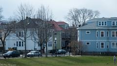 Ferryway's Field (kuntheaprum) Tags: majorthomasmeninopark menino charlestown boston cityscape nikon d80 samyang 85mm f14 water tobinbridge cityofboston