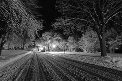Winter's final storm in Wisconsin. (Andy Ziegler) Tags: street perspective leadinglines snow snowstorm wisconsin jefferson jeffersonwisconsin nightshot longexposure trees lights blackandwhite monochrome canon6d blackwhitephotos