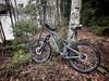 Clean Bike (pjen) Tags: nordic boreal maastopyörä pike 275 650b kashima trail bicycle bike 2x11 outdoor vehicle 5010 5010cc 50to01 spring santacruz mtb finland nature forest carbon fullsuspension hiilikuitu maastopyöräily tree lake wood