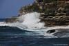 Hunter Park, Bondi Beach, Australia (Neil Holden) Tags: bondibeach newsouthwales australia