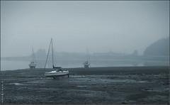 Sea mist (davekpcv) Tags: seamist harbour boat mist fog ynysmôn anglesey wales cymru weather