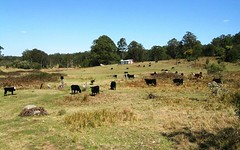 1732-1792 Cochrane Firetrail, Carrai NSW