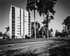 Pinhole's Construction (Alexis Cayot) Tags: cayot blanc dilution alexis format film hc110 pinhole delta etang plan inoir 100 4x5 argentique ilford analog stenope