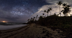 Cosmic Ocean (miTsu-llaneous) Tags: milkyway landscape milky way astrophotography seascape night beach stars caribbean island trinidad trees dark nikon d500 tokina 1116 cloud nature galaxy
