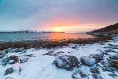 IMG_9062 (tomikaro) Tags: tromsø wintrer auroraborealis aurora trip landscape northern enjoythearctic arctic norway